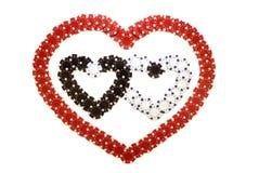 Coeurs faits de puces Photo libre de droits