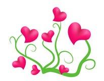 Coeurs fleurissants Photos libres de droits