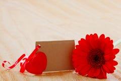 Coeurs rouges de Gerber et d'amour Photos stock