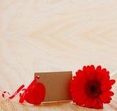 Coeurs rouges de Gerber et d'amour Photographie stock libre de droits