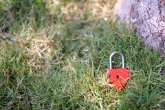 Coeurs rouges principaux sur la pelouse, le concept de l'amour et Valentine& x27 ; s Image libre de droits