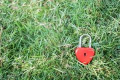 Coeurs rouges principaux sur la pelouse, le concept de l'amour et Valentine& x27 ; s Image stock