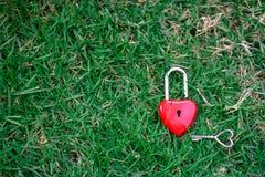 Coeurs rouges principaux sur la pelouse, le concept de l'amour et Valentine& x27 ; s Photos stock