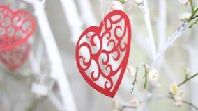 Coeurs rouges sur la branche d'arbre Concept heureux d'amour de coeur de c?l?bration de jour de valentines de vacances banque de vidéos