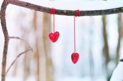 Coeurs rouges sur la branche d'arbre neigeuse en hiver Concept heureux d'amour de coeur de célébration de jour de valentines de v Image libre de droits
