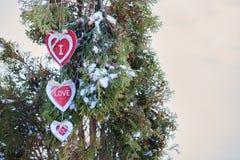 Coeurs sur l'arbre de Noël, neige, hiver, jour du ` s de Valentine en parc Photo stock