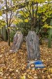 Cofanetto di Halloween Immagini Stock