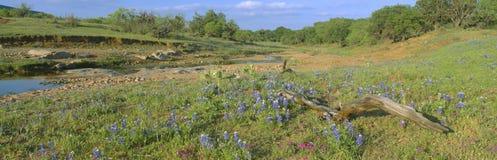 Cofani blu nel paese della collina Fotografia Stock Libera da Diritti
