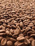 Cofe. Burnt coffee beans, close up Stock Photography
