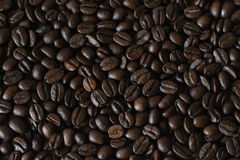 Cofe. Close up of coffee beans stock photos