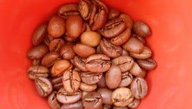 Cofe arabo con la tazza su fondo rosso fotografie stock