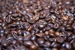 Cofe grains. Dark brown natural cofe grains before grind Stock Photo