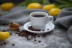Cofee和黄色郁金香 库存图片