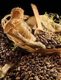 Cofee, coffe,咖啡 免版税图库摄影