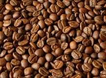 Cofee background Royalty Free Stock Photos