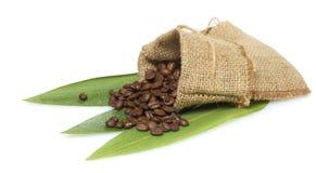 Cofee beans in a bag  Stock Photos