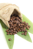 Cofee beans in a bag  Stock Photography