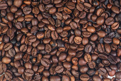 Cofee beans on white. Cofee beans isolated on white background. Aromatic cofee stock images