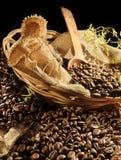 Cofee, coffe, caffè Fotografia Stock Libera da Diritti