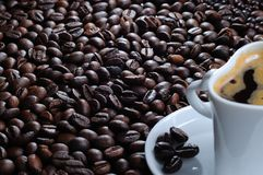 Cofee cup and bean Royalty Free Stock Photo