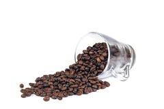 Cofee fasole na bielu Fotografia Stock