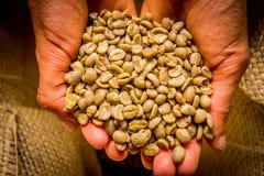 Cofee fasoli zbliżenie Obraz Stock