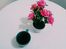 Cofee and flowers. In this picture cant see a delicious cofee and beautiful pinkies flowers royalty free stock photography