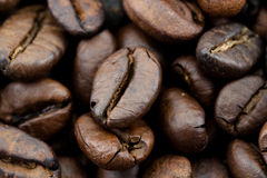 Cofee macro. Super close up image of coffe beans Royalty Free Stock Photo