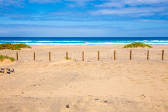 Cofete beach Stock Photography