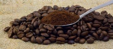 coffe咖啡粒被研的匙子 免版税库存照片