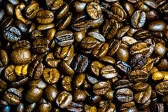 Coffe杯子和种子 免版税库存照片