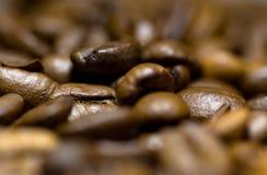 Coffe杯子和种子 图库摄影