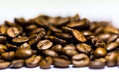 Coffe杯子和种子 免版税库存图片