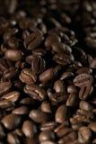 豆coffe 免版税库存图片