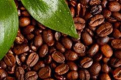 Coffe Image stock