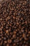 Coffe fotos de stock royalty free
