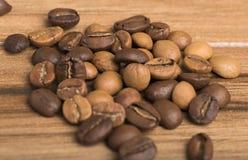 Coffe stockbilder