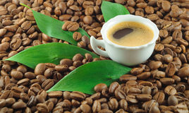 Coffe stockfoto
