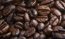 Coffe bönamakro Arkivbild