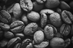 Coffe bönor på det svartvita fotoet Arkivfoto