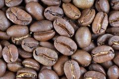 Coffe beams Stock Photos
