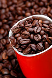 Coffe bean Stock Photo