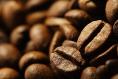 Coffe bean. In extra close up Royalty Free Stock Photo