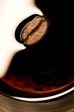 Coffe bean closeup stock images
