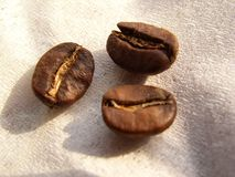 Coffe beans. Coffee on coffee filter papier stock photos