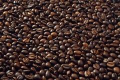 Coffe beans royalty free stock photos