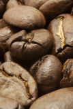 Coffe beans. Macro view of coffee beans Royalty Free Stock Photos