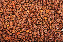 Coffe and Beans Stock Image