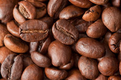 Coffe beans. Background from coffee grains close up Stock Images