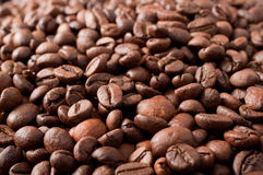 Coffe beans. Background from coffee grains close up Stock Photos
